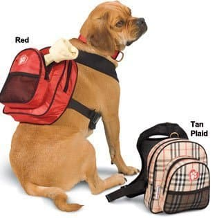 Dog Backpack   Luxury Camping