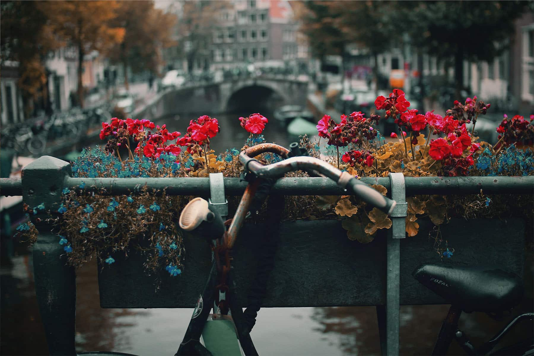 Amsterdam, The Netherlands | World's Most Creative Cities of 2016